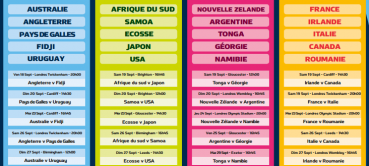 Parier sur la Coupe du Monde de Rugby 2015 : pronostics et sites